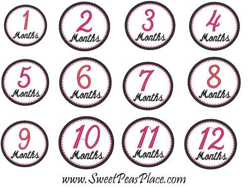Month 1-12 set Number Collection  Applique Embroidery Design